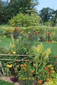 ограда для огорода
